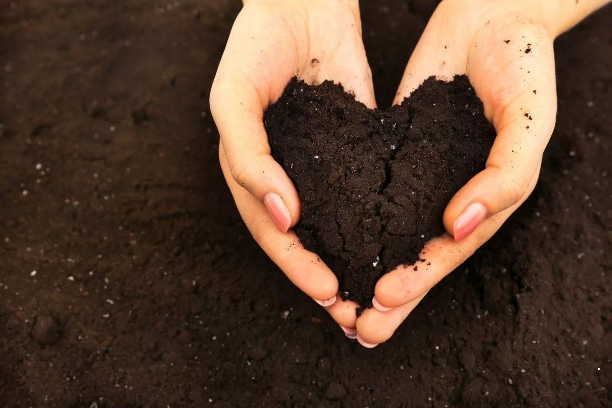 خاک، اطلاعات جامع پیرامون این ترکیب حیاتی