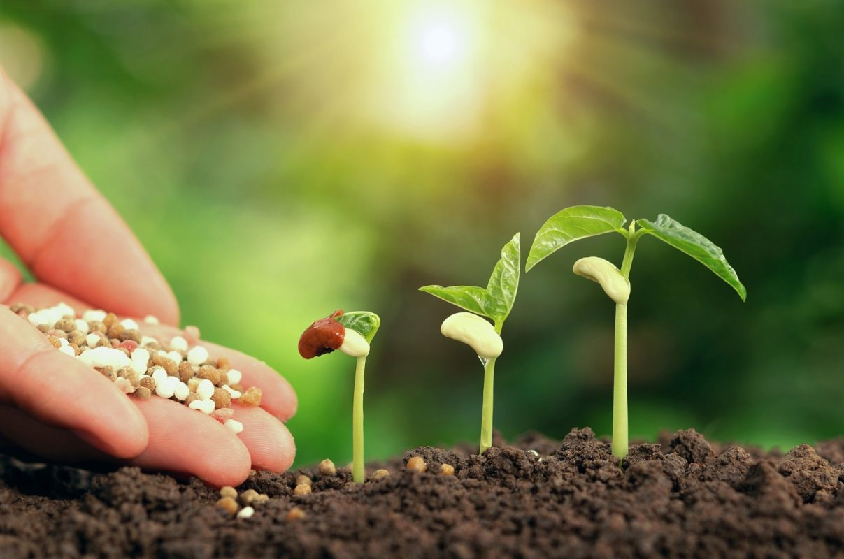 روشهای کوددهی خاک